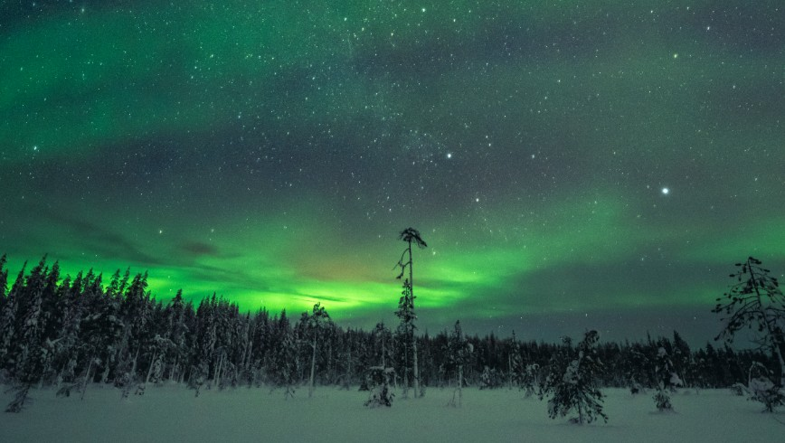 picture of northern lights expedition horse sleigh Lapland Travel Äkäslompolo